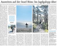 Der Nordschlweswiger - Ausreiten auf der Insel Röm